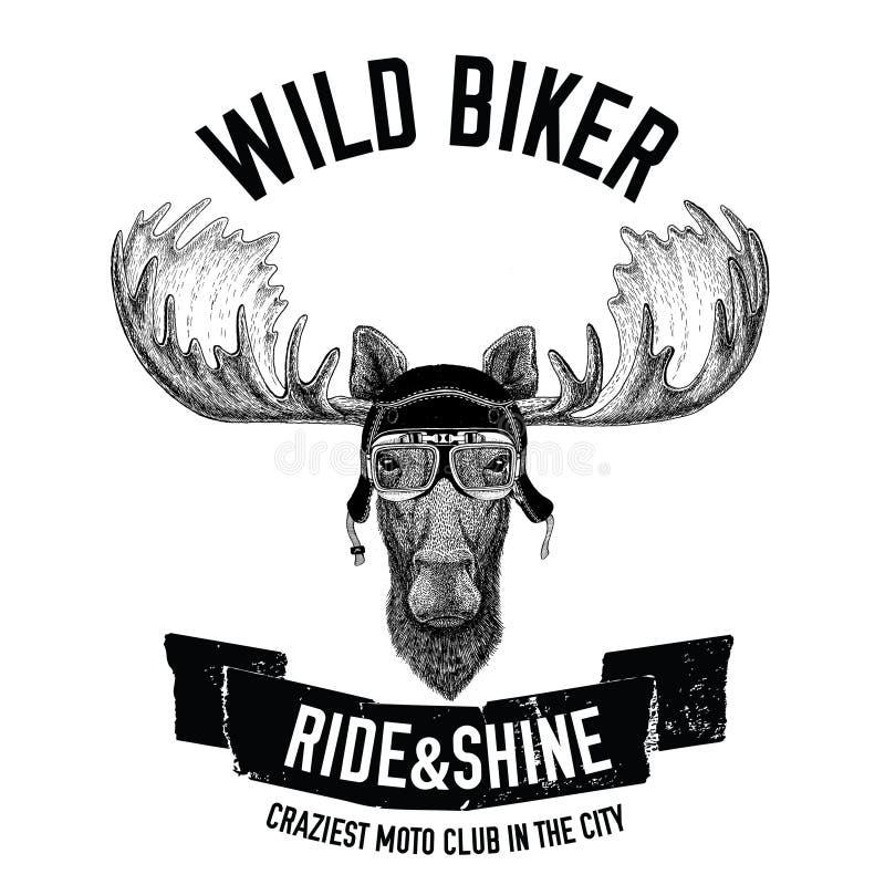 Εκλεκτής ποιότητας εικόνες των αλκών ή των αλκών για το σχέδιο μπλουζών για τη μοτοσικλέτα, ποδήλατο, μοτοσικλέτα, λέσχη μηχανικώ ελεύθερη απεικόνιση δικαιώματος