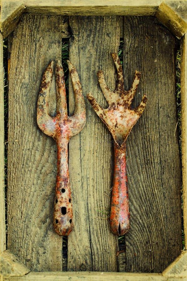 Εκλεκτής ποιότητας εργαλεία κηπουρικής στοκ εικόνες με δικαίωμα ελεύθερης χρήσης