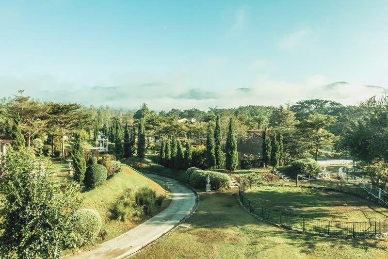 Εκλεκτής ποιότητας κήπος στοκ φωτογραφία με δικαίωμα ελεύθερης χρήσης