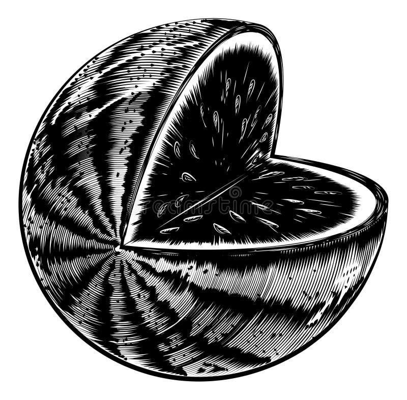 Εκλεκτής ποιότητας καρπούζι ξυλογραφιών διανυσματική απεικόνιση
