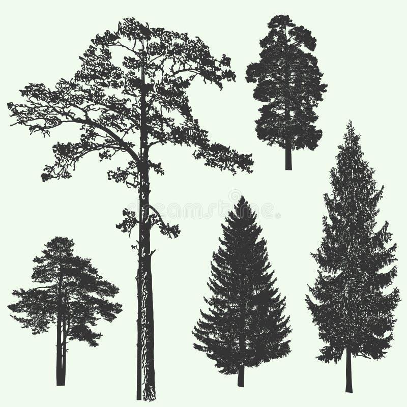 Εκλεκτής ποιότητας πρότυπο σχεδίου δασικών δέντρων επίσης corel σύρετε το διάνυσμα απεικόνισης διανυσματική απεικόνιση