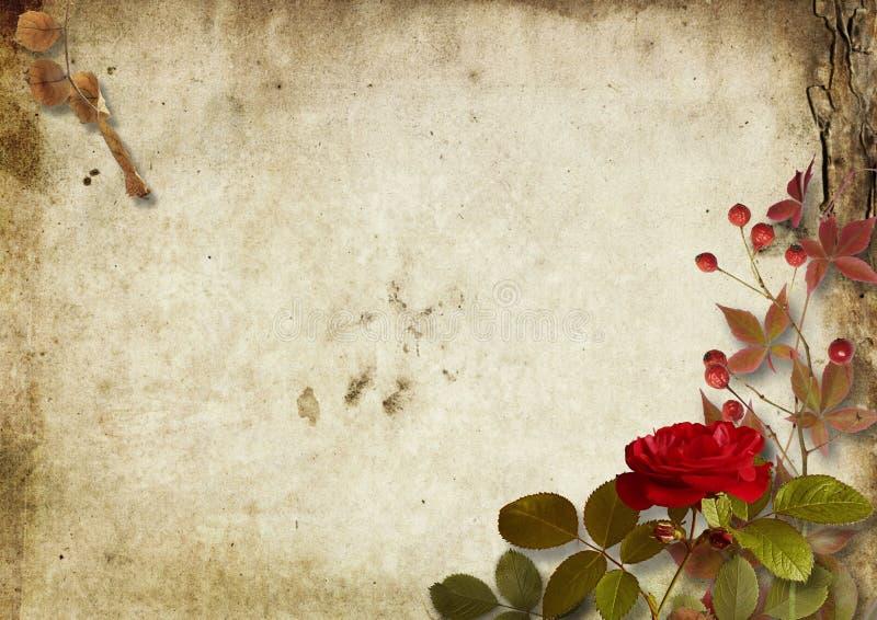 Εκλεκτής ποιότητας φθινοπωρινό υπόβαθρο με τα τριαντάφυλλα και ashberry στοκ φωτογραφία με δικαίωμα ελεύθερης χρήσης