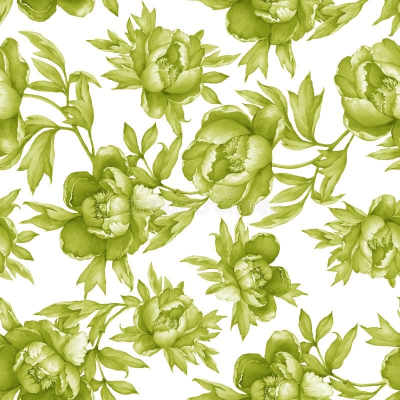 Εκλεκτής ποιότητας floral άνευ ραφής μονοχρωματικό σχέδιο πρασινάδων με το άνθισμα peonies, στο άσπρο υπόβαθρο Watercolor συρμένο διανυσματική απεικόνιση