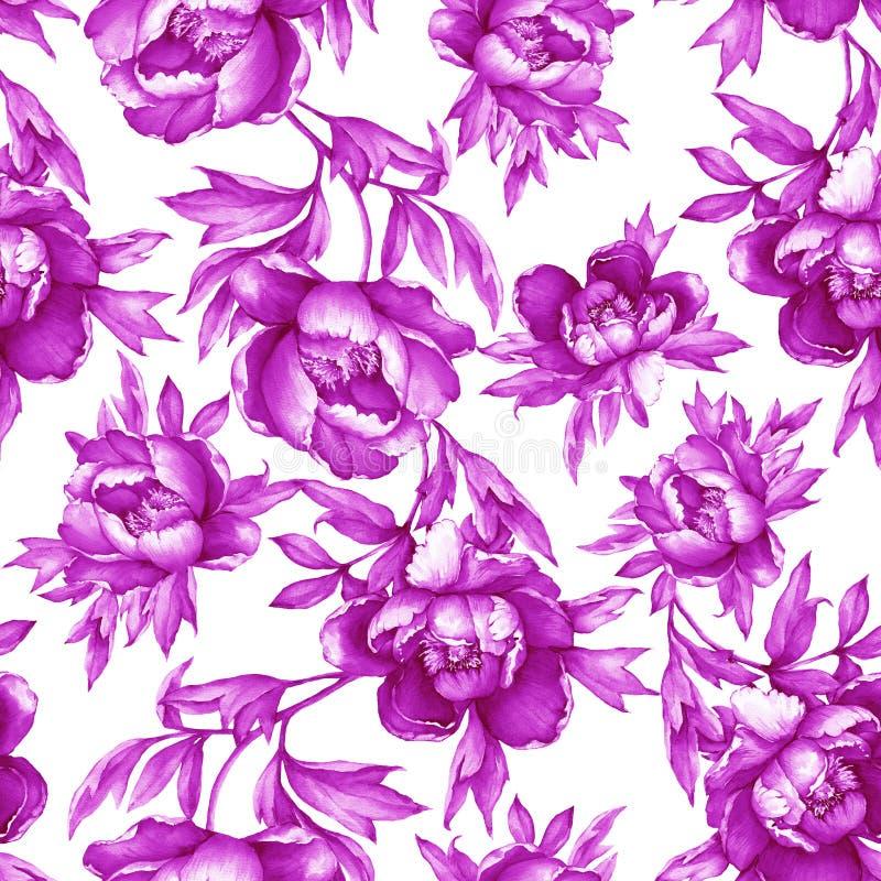 Εκλεκτής ποιότητας floral άνευ ραφής ρόδινο μονοχρωματικό σχέδιο με το άνθισμα peonies, στο άσπρο υπόβαθρο Συρμένη χέρι ζωγραφική απεικόνιση αποθεμάτων