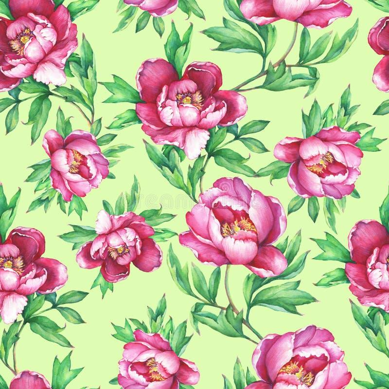 Εκλεκτής ποιότητας floral άνευ ραφής σχέδιο με τα ανθίζοντας ρόδινα peonies, στο υπόβαθρο πρασινάδων Συρμένο illus ζωγραφικής wat διανυσματική απεικόνιση