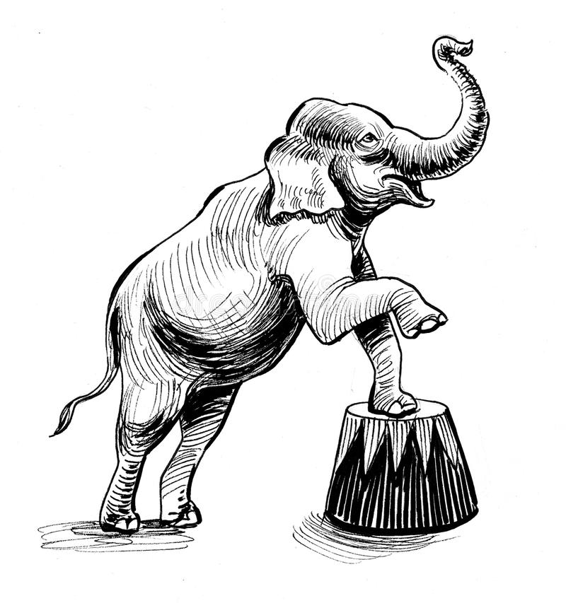 Ελέφαντας στο τσίρκο ελεύθερη απεικόνιση δικαιώματος