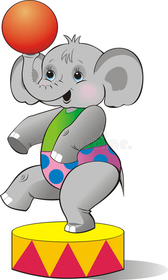 ελέφαντας τσίρκων μόσχων στοκ εικόνες