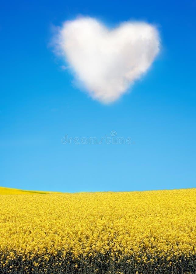 ελαιόσπορος καρδιών σύννεφων που διαμορφώνεται στοκ φωτογραφία