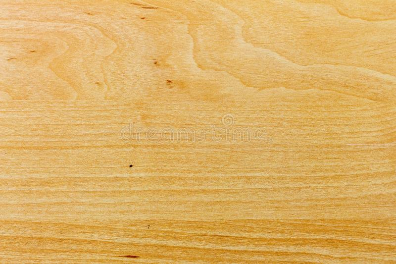 Ελαφριά ξύλινη σύσταση ξύλου πεύκων, κομμάτι προς κατεργασία, υπόβαθρο για το design_ στοκ φωτογραφία με δικαίωμα ελεύθερης χρήσης