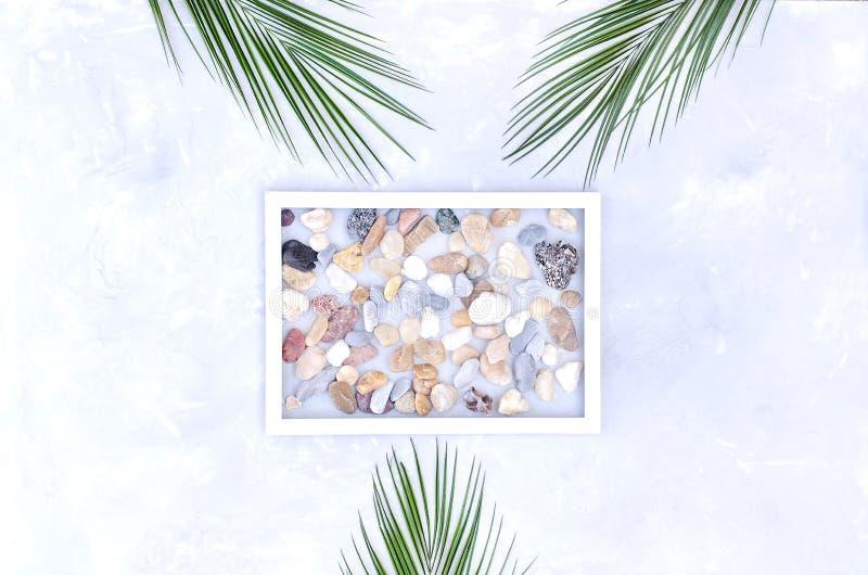 Ελαφριά σύνθεση των πετρών θάλασσας και των κλάδων φοινικών στοκ εικόνα με δικαίωμα ελεύθερης χρήσης