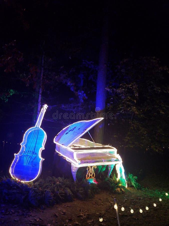 Ελαφριά όργανα Χριστουγέννων Garvin στοκ εικόνα