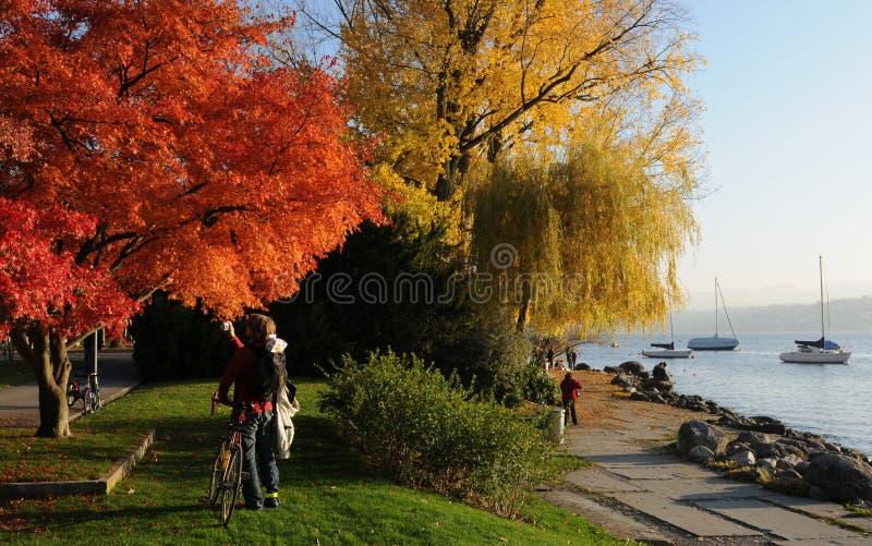 Ελβετία: Χρώματα Autum στη λίμνη ZÃ ¼ πλούσια σε Seefeld στοκ εικόνες