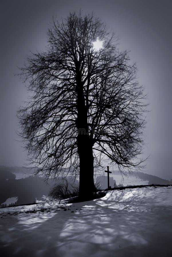 ελβετικά στοκ φωτογραφίες με δικαίωμα ελεύθερης χρήσης