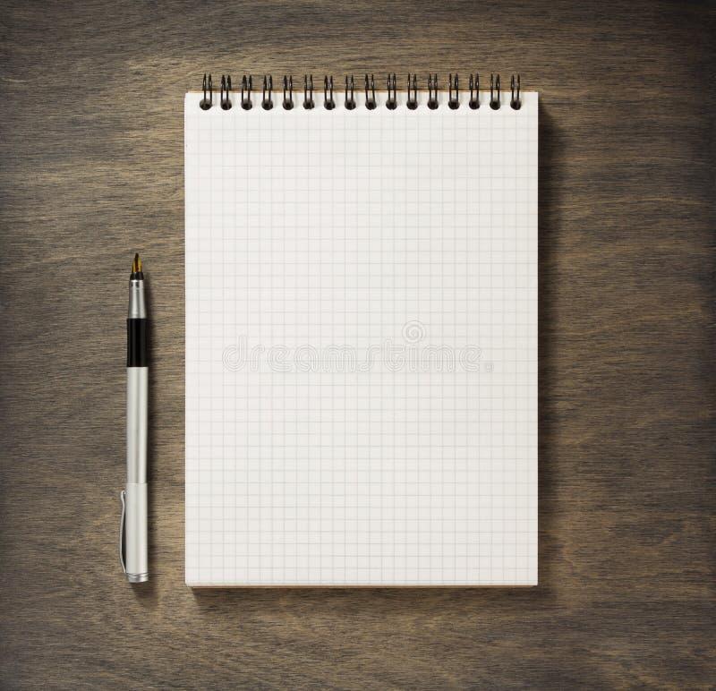 Ελεγχμένες σημειωματάριο και μάνδρα στοκ εικόνες με δικαίωμα ελεύθερης χρήσης