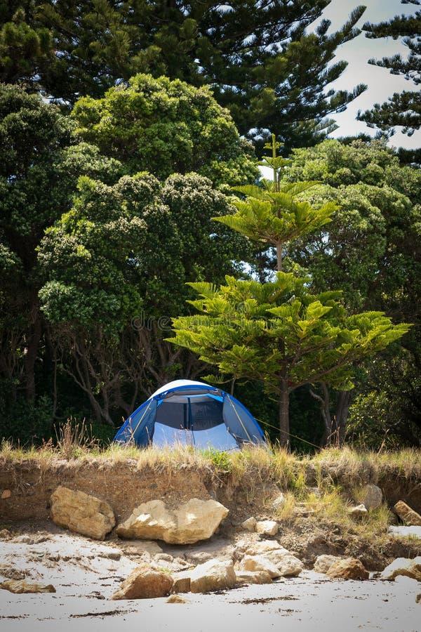 Ελευθερία που στρατοπεδεύει, κοντά σε Gisborne Ανατολική Ακτή, βόρειο νησί, Νέα Ζηλανδία στοκ φωτογραφίες με δικαίωμα ελεύθερης χρήσης