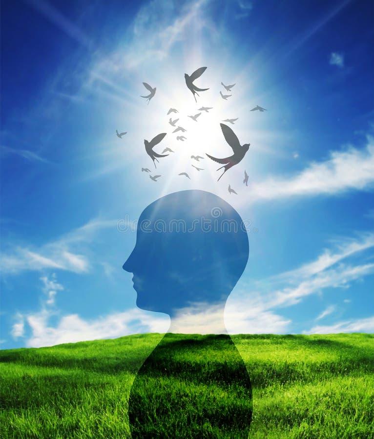 Ελεύθερη σκέψη, διεγείρει το μυαλό σας, θετικές σκέψεις και καλές προθέσεις, ιδέα της εγκεφαλικής ισχύος στοκ φωτογραφίες με δικαίωμα ελεύθερης χρήσης
