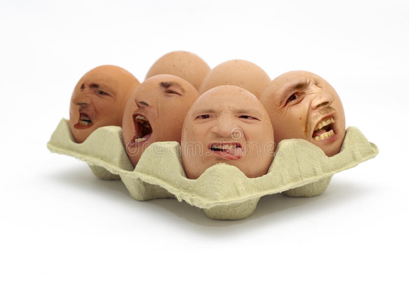 ελεύθερη όχι σειρά αυγών στοκ φωτογραφία με δικαίωμα ελεύθερης χρήσης