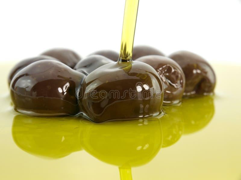 ελιές ελιών πετρελαίου στοκ φωτογραφία με δικαίωμα ελεύθερης χρήσης