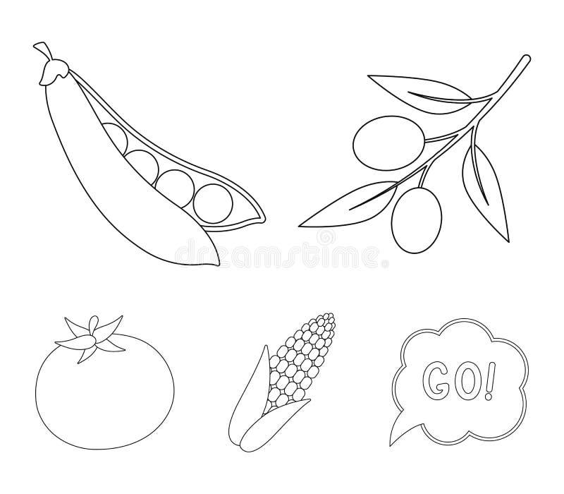 Ελιές σε έναν κλάδο, γλυκά μπιζέλια, σπάδικας καλαμποκιού, κόκκινη ντομάτα Τα λαχανικά καθορισμένα τα εικονίδια συλλογής στο διαν ελεύθερη απεικόνιση δικαιώματος