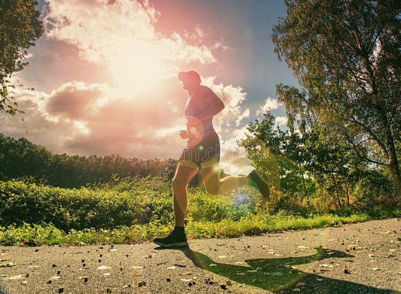 Ελκυστικό και ψηλό άτομο δρομέων στο λεπτό sportswear τρέξιμο στοκ φωτογραφίες με δικαίωμα ελεύθερης χρήσης