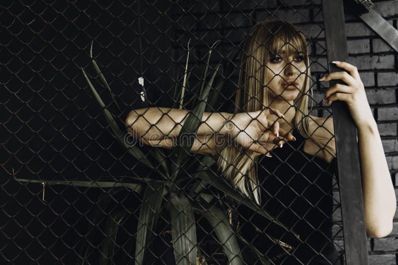 Ελκυστικό κορίτσι μόδας στοκ εικόνα με δικαίωμα ελεύθερης χρήσης