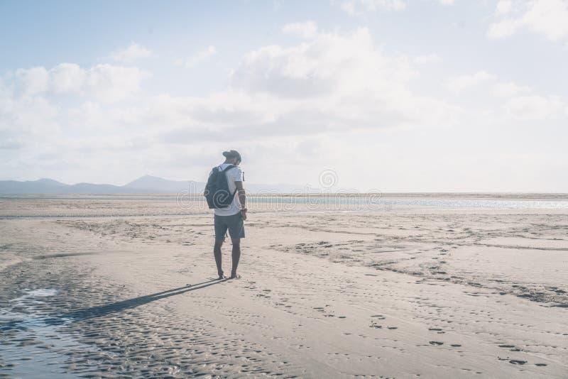 Ελκυστικό νέο μυϊκό γενειοφόρο άτομο που στέκεται στην ακροθαλασσιά στην ανατολή με το σακίδιο πλάτης και που φαίνεται ορίζοντας στοκ εικόνες