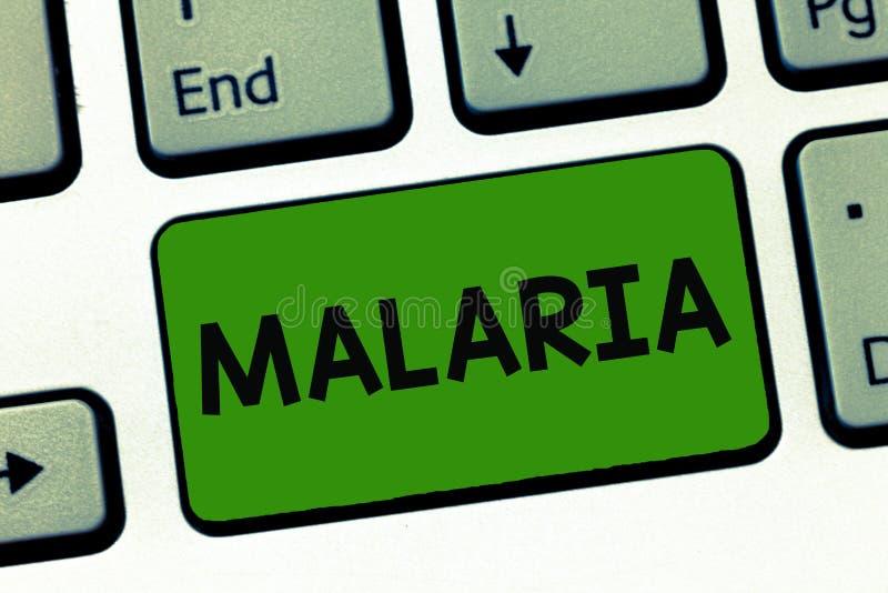 Ελονοσία κειμένων γραψίματος λέξης Επιχειρησιακή έννοια για τις απειλητικές για τη ζωή μεταδιδόμενες με τα κουνούπια περιόδους ασ στοκ εικόνα με δικαίωμα ελεύθερης χρήσης