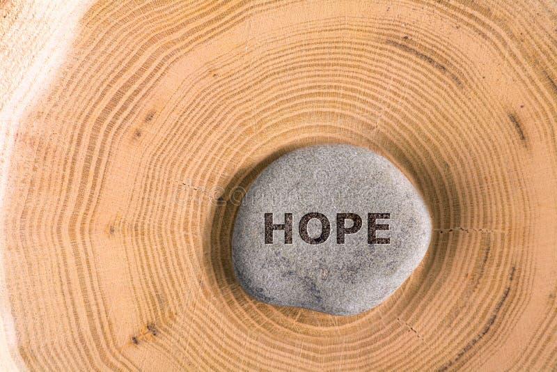 Ελπίδα στην πέτρα στο δέντρο στοκ εικόνα