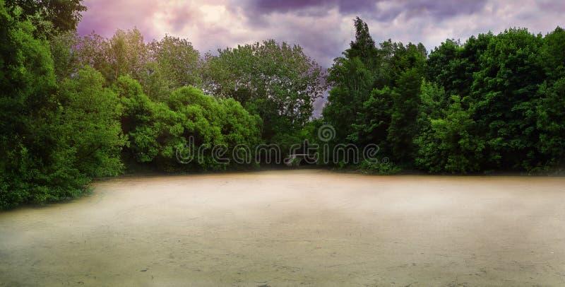 Ελώδης περιοχή που καλύπτεται με την ομίχλη στη θλιβερή ώρα της ημέρας στοκ εικόνες