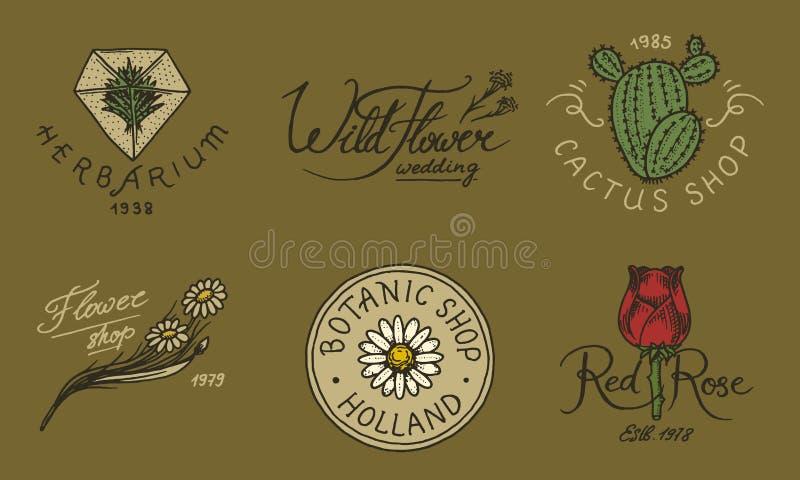 Εμβλήματα ανθοπωλείων και φωτεινό λογότυπο Εκλεκτής ποιότητας ανθοδέσμη Σημάδια κηπουρικής και αναδρομική ετικέτα ομορφιάς Συρμέν απεικόνιση αποθεμάτων