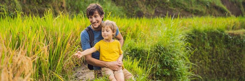 ΕΜΒΛΗΜΑ, ΜΑΚΡΙΟΙ μπαμπάς ΣΧΗΜΑΤΟΣ και ταξιδιώτες γιων στα όμορφα πεζούλια ρυζιού στα πλαίσια των διάσημων ηφαιστείων στο Μπαλί στοκ φωτογραφία με δικαίωμα ελεύθερης χρήσης