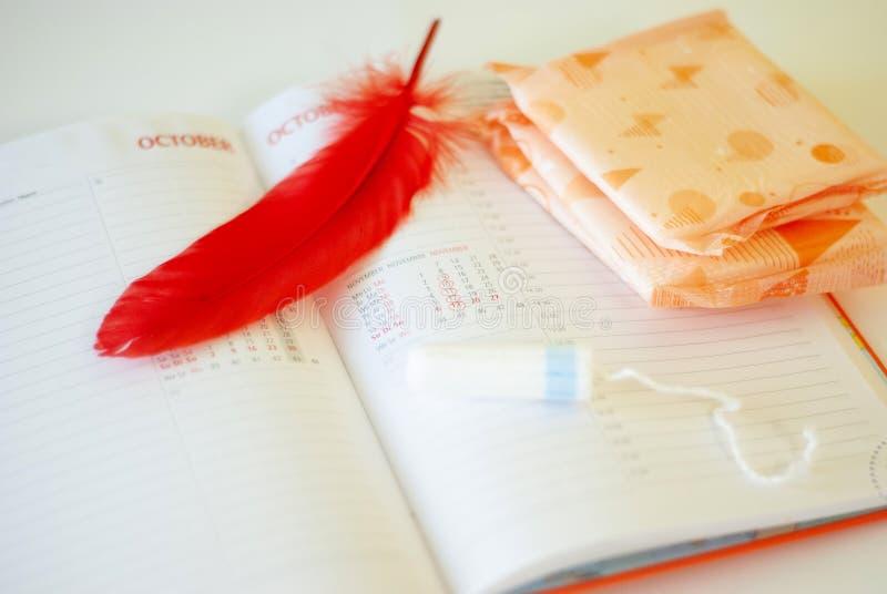 Εμμηνόρροια Γεμίζει τα σκάφη της γραμμής, tampons και το ημερολόγιο με τις κόκκινες ημέρες σε ένα άσπρο υπόβαθρο στοκ φωτογραφίες
