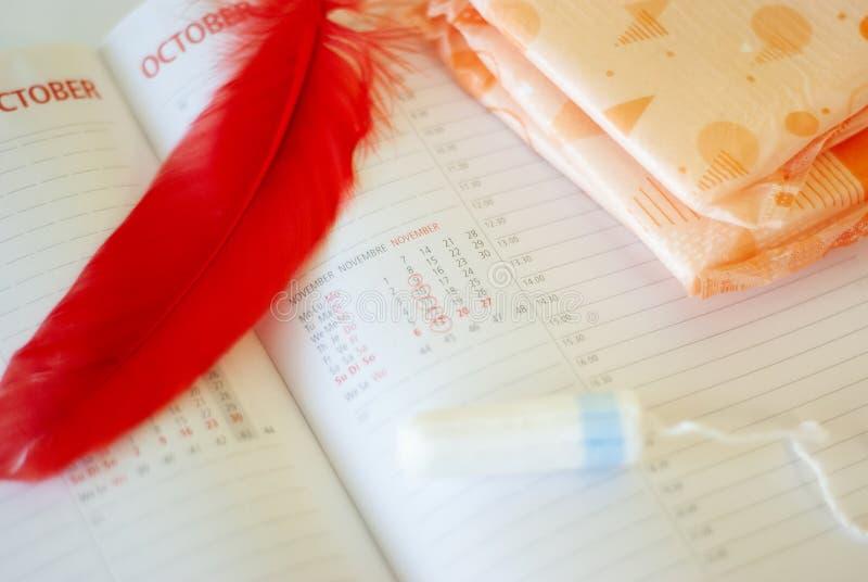 Εμμηνόρροια Γεμίζει τα σκάφη της γραμμής, tampons και το ημερολόγιο με τις κόκκινες ημέρες σε ένα άσπρο υπόβαθρο στοκ εικόνες