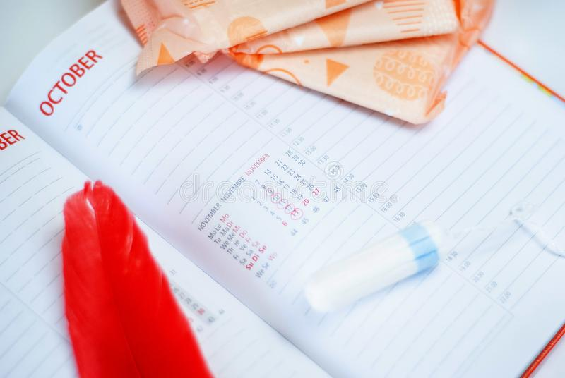 Εμμηνόρροια Γεμίζει τα σκάφη της γραμμής, tampons και το ημερολόγιο με τις κόκκινες ημέρες σε ένα άσπρο υπόβαθρο στοκ φωτογραφία με δικαίωμα ελεύθερης χρήσης