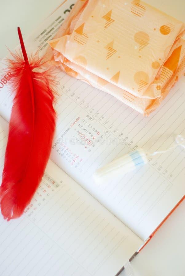 Εμμηνόρροια Γεμίζει τα σκάφη της γραμμής, tampons και το ημερολόγιο με τις κόκκινες ημέρες σε ένα άσπρο υπόβαθρο στοκ εικόνα