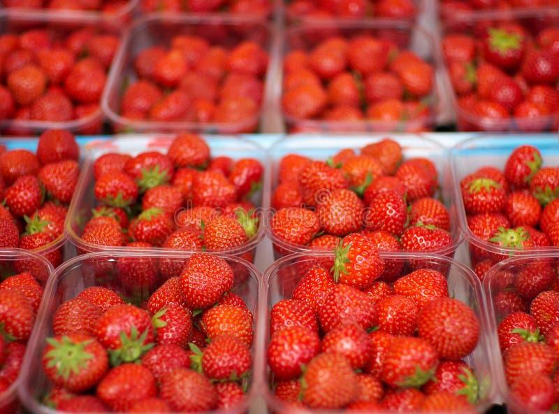 Εμπορευματοκιβώτια φραουλών στοκ εικόνες με δικαίωμα ελεύθερης χρήσης