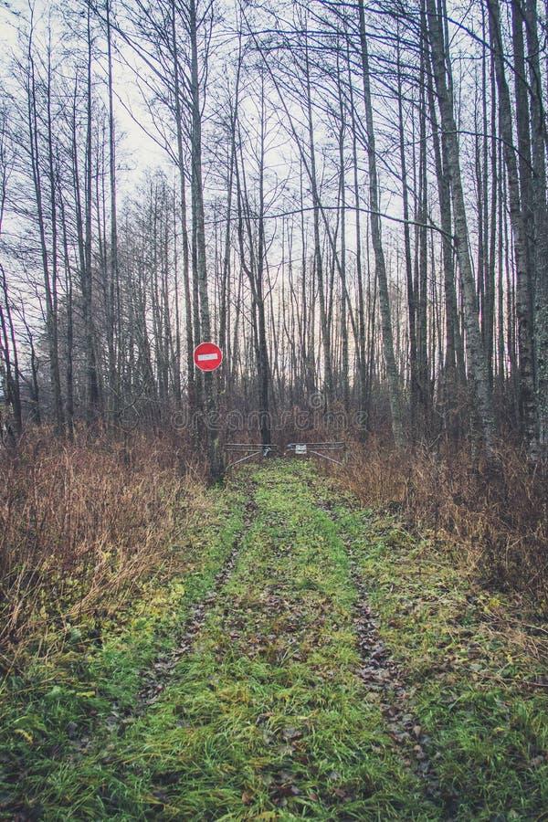 Εμπόδιο για να εισαγάγει τη δασική απαγόρευση της εισόδου του δασικού παραθυρόφυλλου πέρα από το δρόμο Πύλη στο δρόμο στο ξύλο στοκ φωτογραφίες με δικαίωμα ελεύθερης χρήσης