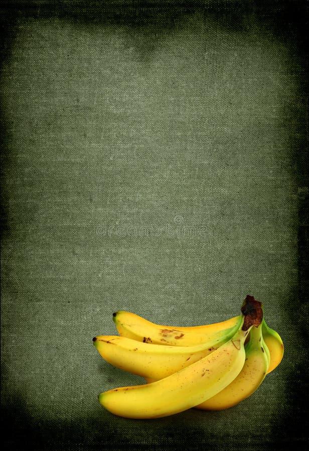 ενάντια στις μπανάνες ανα&sigma στοκ εικόνα