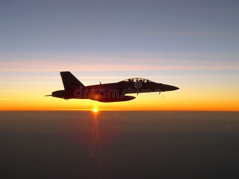 Download ενάντια στον ήλιο τιμής τών παραμέτρων Hornet Στοκ Εικόνα - εικόνα από ηλιοβασίλεμα, μύγα: 22794969