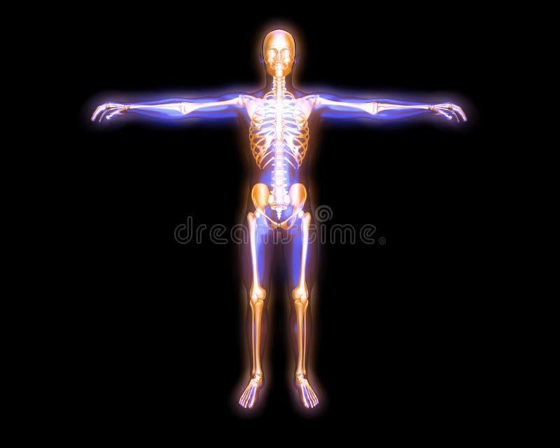 ενέργεια σωμάτων απεικόνιση αποθεμάτων