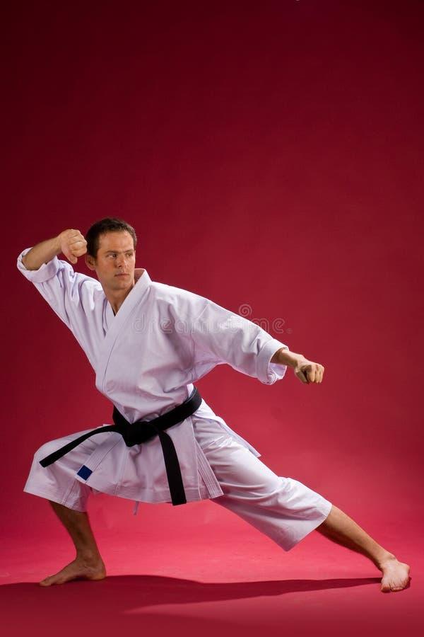 ενήλικο μαύρο karate ζωνών στοκ εικόνα με δικαίωμα ελεύθερης χρήσης