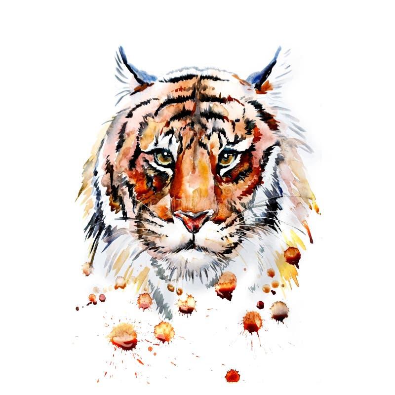 Ενήλικη τίγρη γραφική, διάνυσμα απεικόνιση αποθεμάτων
