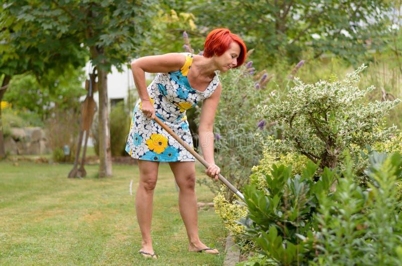 Ενήλικη Redhead γυναίκα που μαζεύει με τη τσουγκράνα τον κήπο λουλουδιών στοκ εικόνες με δικαίωμα ελεύθερης χρήσης