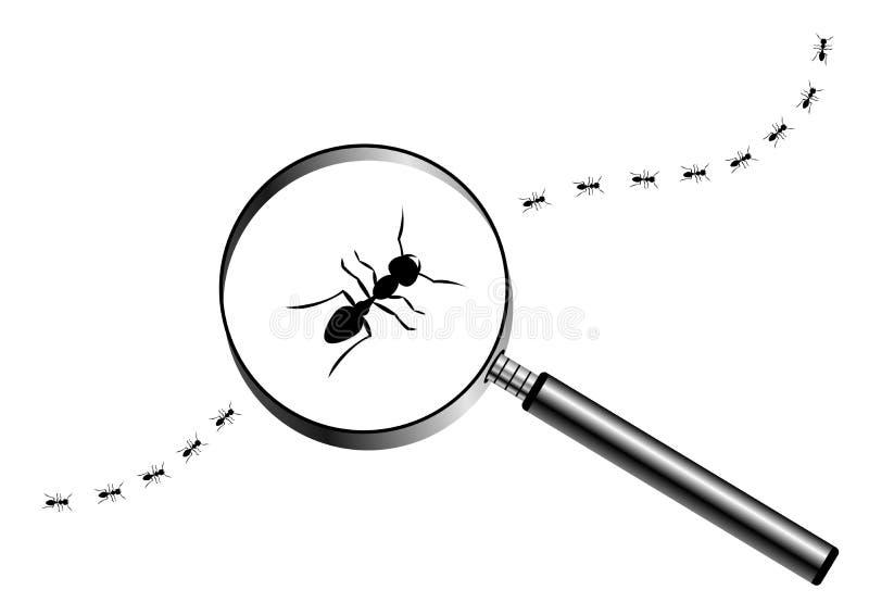 Ενίσχυση - γυαλί με την πορεία των μυρμηγκιών ελεύθερη απεικόνιση δικαιώματος