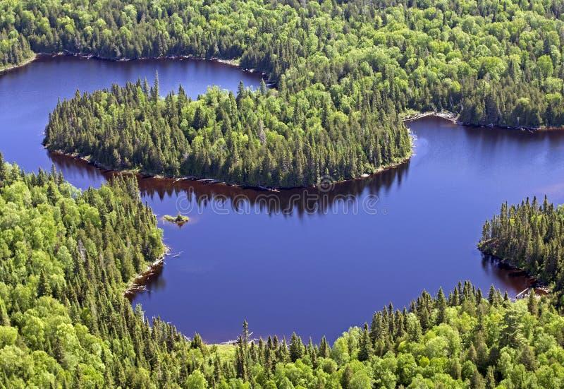 Εναέρια άγρια λίμνη στοκ εικόνες με δικαίωμα ελεύθερης χρήσης
