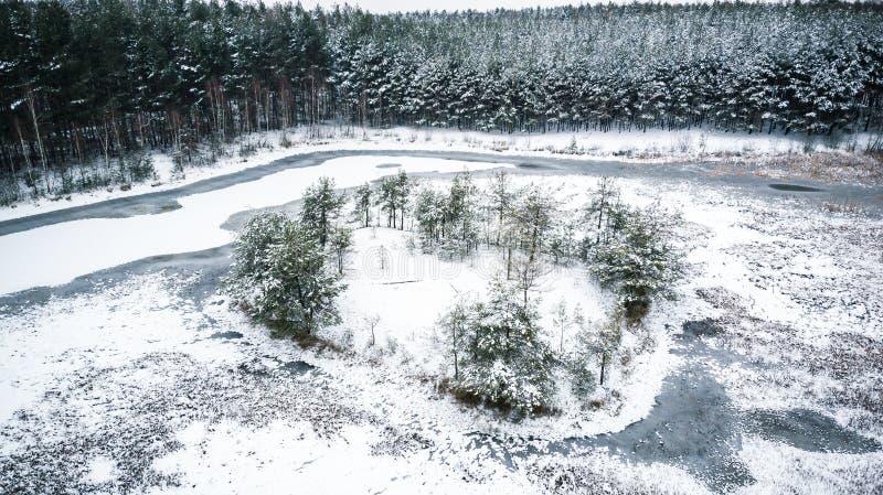 Εναέρια άποψη κηφήνων πέρα από την παγωμένη λίμνη στα ξύλα στοκ εικόνα