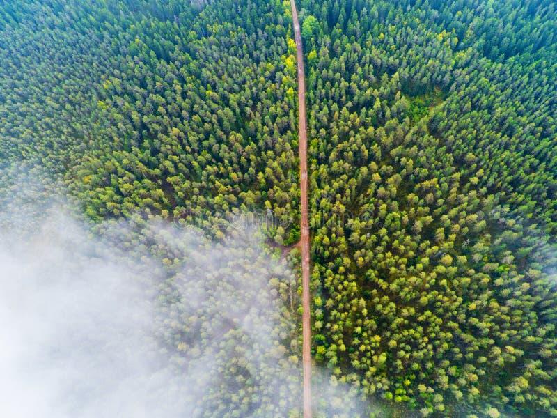 Εναέρια άποψη μιας εθνικής οδού στο δασικό όμορφο τοπίο Σύννεφα πέρα από το πράσινους δάσος και το δρόμο Εναέριος δρόμος ματιών π στοκ εικόνες