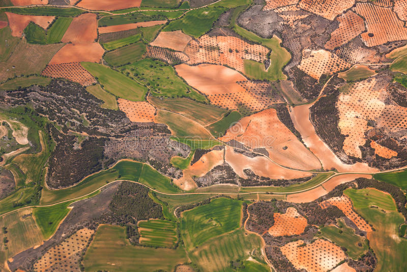 Εναέρια άποψη της αγροτικής περιοχής/των πράσινων τομέων και των φυτειών ελιών/ στοκ εικόνες