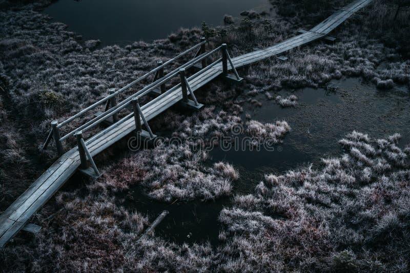 Εναέρια άποψη της ξύλινης πορείας, δρόμος στο έλος στον πρώιμο χειμώνα mornin στοκ εικόνα