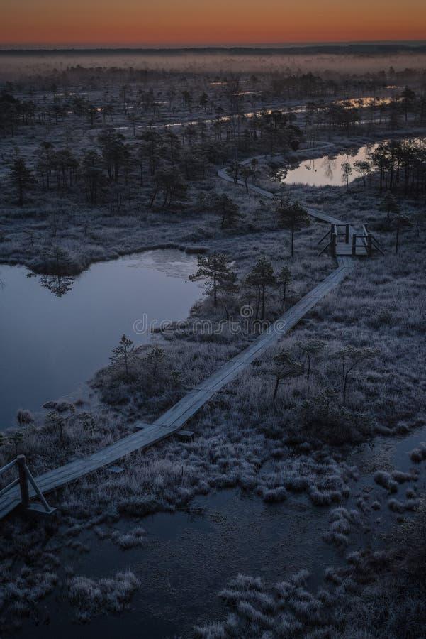 Εναέρια άποψη της ξύλινης πορείας, δρόμος στο έλος του στις αρχές χειμερινού πρωινού στοκ φωτογραφία με δικαίωμα ελεύθερης χρήσης